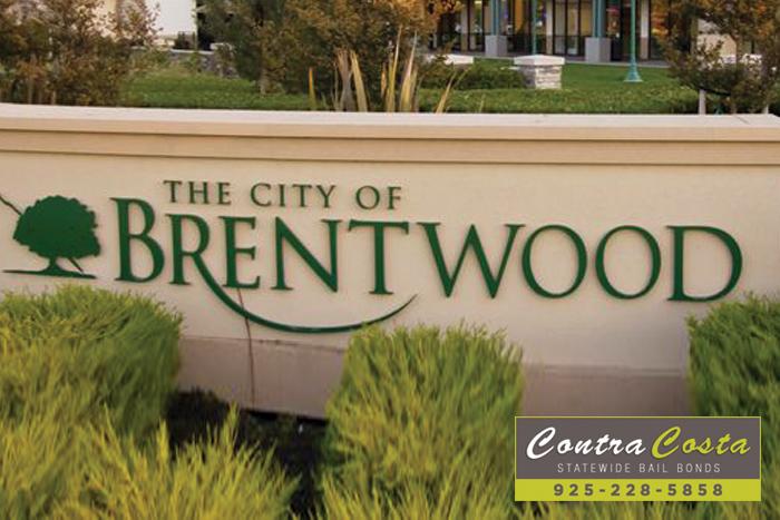Brentwood Bail Bonds