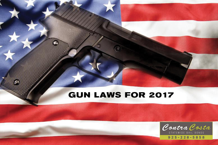 New Gun Laws For 2017