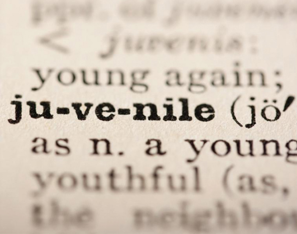 About Juvenile Records